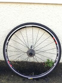 Shimano R500 rear wheel with Mavic tyre and 9-speed cassette