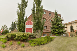 Great 1 bedroom apartments available now! Edmonton Edmonton Area image 16