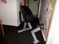 exercise bench abdominal