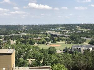 Downtown condo/ river valley view