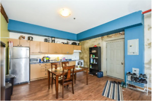 Large 5 bedroom unit available in the Bridgeport Lofts!