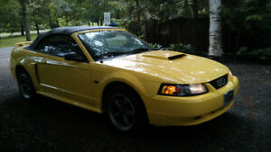 2001 Ford Mustang inpécable Coupé (2 portes) décapotable