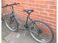 Ladies Raleigh Genesis Bike