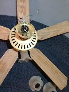 Two Ceiling Fans