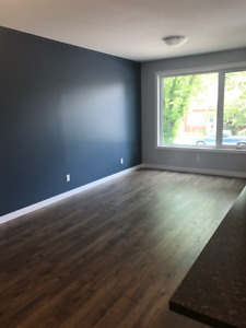 Brand new 2 bedroom, 2 bath unit in downtown utilities included