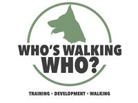 Dog training and dog walking