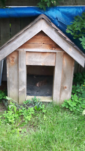 Giant dog house for sale $50