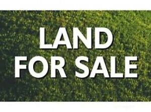 Vacant Lot Available in Torbay