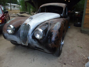 jaguar xk140 coupe project