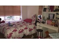 SPACIOUS DOUBLE TO SHARE (BEDSIT) GIRL ALREADY LIVING IN