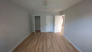 Renovated 3 bedroom 1 bath near Queens and Downtown