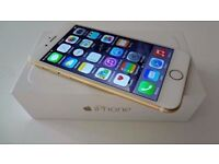 iPHONE 6 PLUS GOLD IMMACULATE LIKE NEW UNLOCKED BOX CHARGER ONLY £250