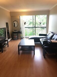 Spacious Pet friendly 1 BR apt in Kitsilano