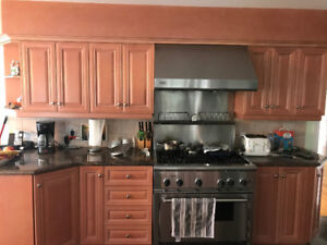 Kitchen cabinets in wonderful condition!!