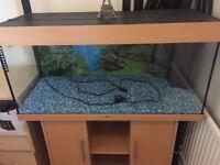 Juwel Fish Tank Vision 180