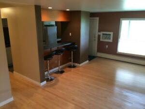 2 Bedroom Newly Renovated Main Floor Condo For Rent