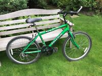 Raleigh Max and Raleigh Boulder Bike for Sale. Great for older children or young teenagers