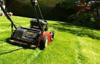 Lawn Mowing Provided by High School Student