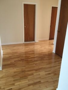 5 1/2 Fully Renovated and Heated