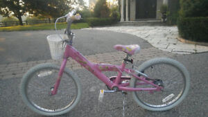 Two Girls Bike For Sale