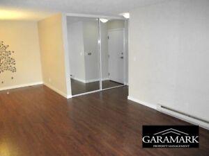 Regis Avenue - 1 Bedroom Apartment for Rent