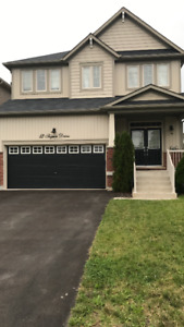 Gorgeous home in Richmond Hill for Rent