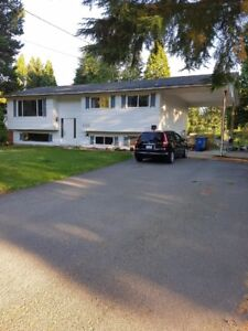 Beautiful, clean house for rent with large yard