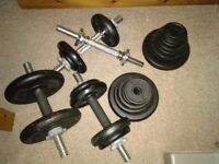 Dumbbells & weights for sale- kingston, need collecting