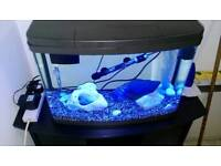 Aquarium 64 liter fish tank panorama love fish model