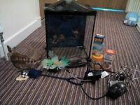 starter fish tank with gravel ornaments light filter treatments net