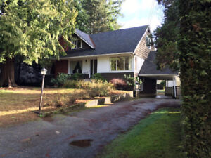 Single house for rent close to lougheed area