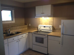 3 bdrm suite in Millwoods - Pets OK  Aug 1 Occupancy