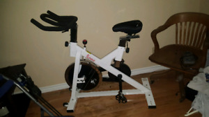 Spin bike. Chair gym. personal trainer bike