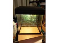 25 litre fish tank for sale