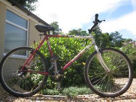 Men's Giant Coldrock Mountain Bike