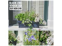 freshly planted, wild flowers and plants in lovely window boxes and pots, peckham, dulwich, nunhead,