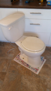 Bone colored toilet