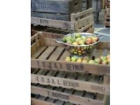 x6 Vintage Wooden Chitting Trays Rustic Storage Crates Display