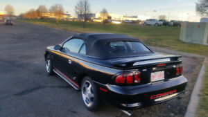 97 FORD MUSTANG COBRA S.V.T. CONVERTIBLE IMMACULATE