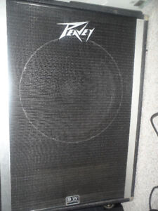 BLACK WIDOW EQUIPPED PEAVEY 18 INCH BASS CABINET