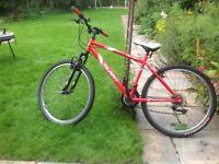 For Sale my son's Slant bike.