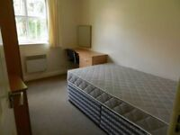 Looking for a room in Plymouth