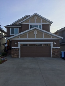 Spacious Basement for Rent in Parsons Creek
