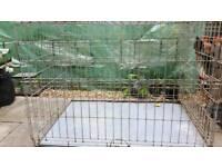 Exra Large dog cage