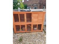 2 tier rabbit hutch