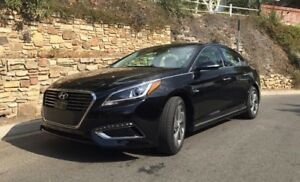 Lease Takeover: 2016 Hyundai Sonata Hybrid Ultimate Sedan