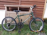 5 speed - Kids bike - 14in emmelle stealth- re-advertised due to no show