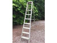 Alloy Step Ladder 7 Step