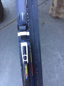 Salomon cross country skis.