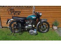 Triumph Datona T100